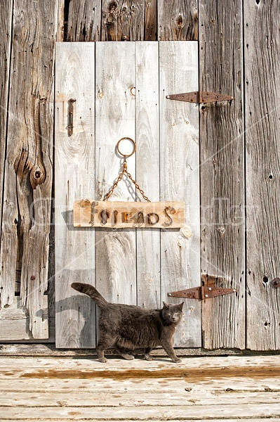 Hand crafted Friends art sign made out of wood and recycled or repurposed farm tools and machinery parts