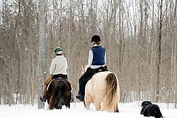 Horseback riding in the snow in Ontario Canada