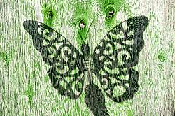 Shadow of a butterfly cutout on a faded green barn door