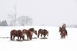 Young woman riding horse in snowstorm in Ontario Canada