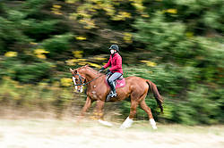 Woman riding chestnut Thoroughbred horse