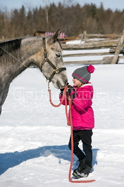 Young girl with gray horse