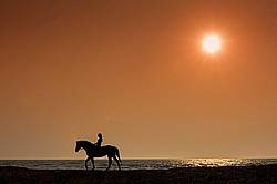 Young woman horseback riding along beach at sunset