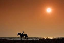 Young woman horseback riding along beach at sunset