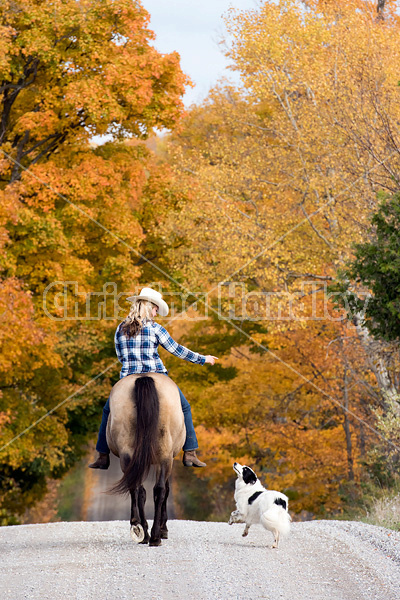 Young woman horseback riding through autumn colored scenery