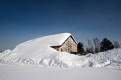 Heavy snow on barn