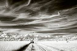 Infrared photo of tractor and haybine cutting hay