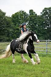 Young girl riding a Gypsy Vanner horse