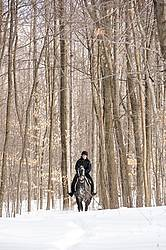 Woman riding Hanoverian mare in deep snow