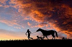 Silhouette with girl, dog and horse