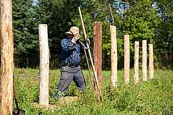 Farmer building new fence