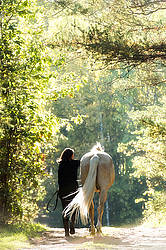 Woman with a palomino horse