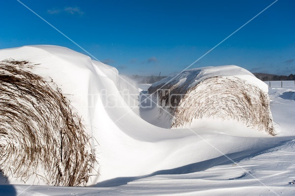 Round bales of hay covered in snow