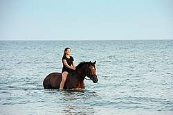 Young woman horseback riding in Lake Ontario