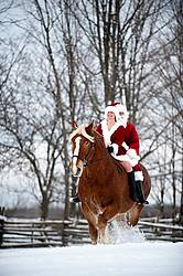 Santa Claus and Mrs. Claus riding double on a Belgian draft horse