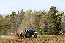 Man driving tractor pulling a seed drill planting oats