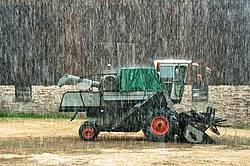 Combine harvester sitting in barn yard during rain storm.