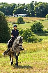 Woman riding gray horse in field