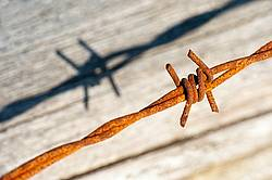 Close-up photo of barbed wire fence