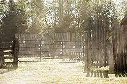 Photo of an early moring scene on the farm. Cobwebs, spider webs on gate