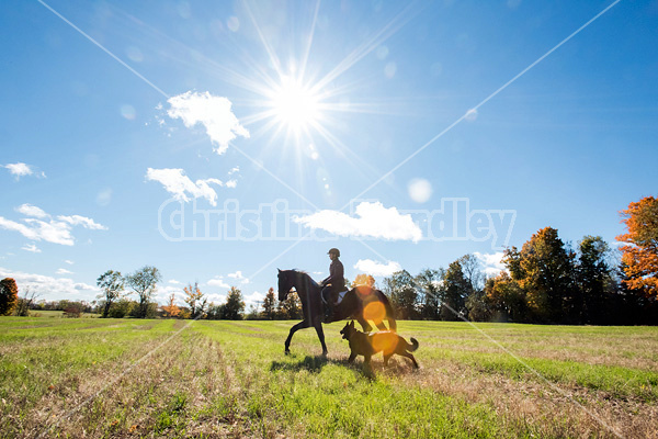 Woman horseback riding through field in the autumn time