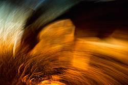Abstract photo of a horse using a slow shutter speed