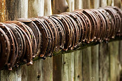 Old rusty horseshoes
